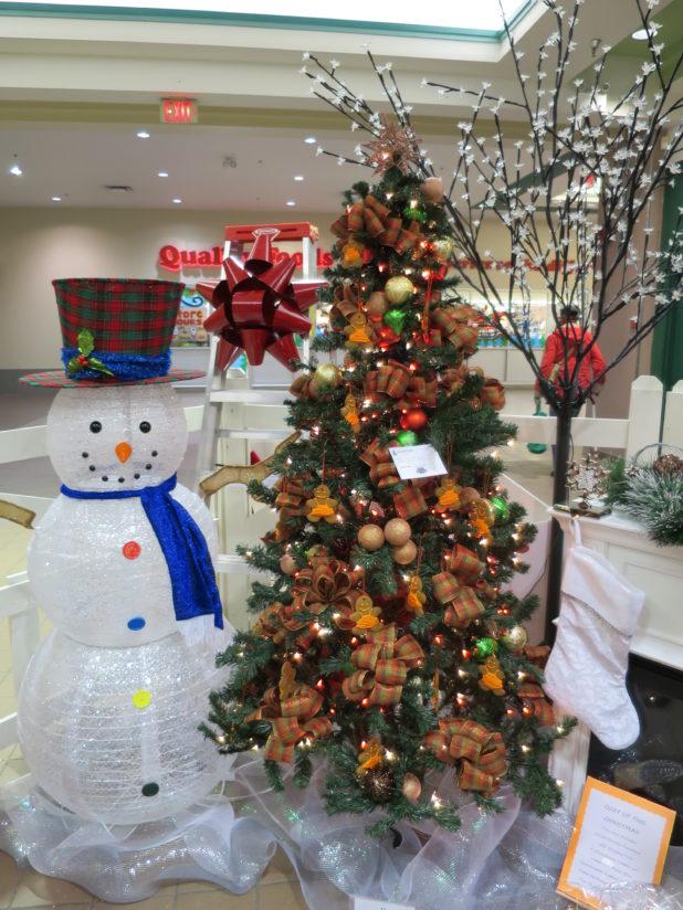 Driftwood Mall Christmas 2015 074