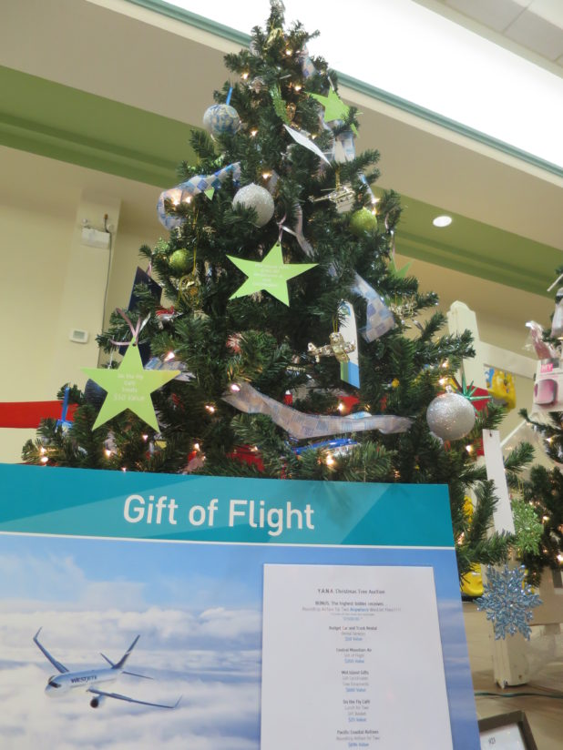 cvac-gift-of-flight-2016